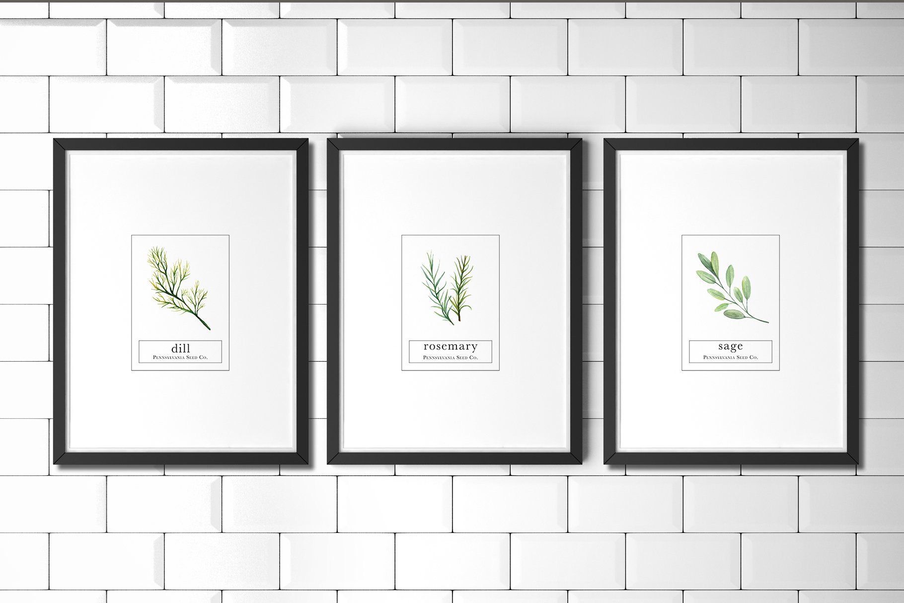 Herb Seed Packet Printable Set Of 6 Illustrations Creative Market