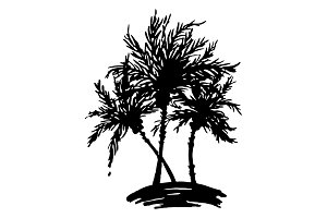 Palm tree ink sketch vector art