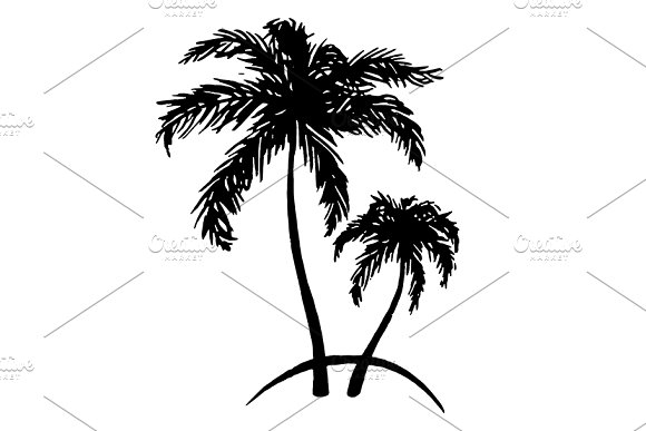 Palm tree ink sketch vector art