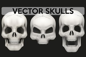 Vector set of 3 Human skulls