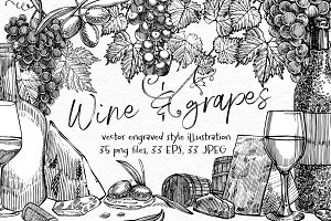 Wine and grapes set illustrations