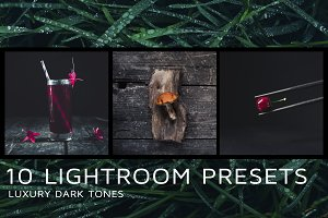 10 Dark tones presets for Lightroom