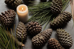 Candle and pineapples