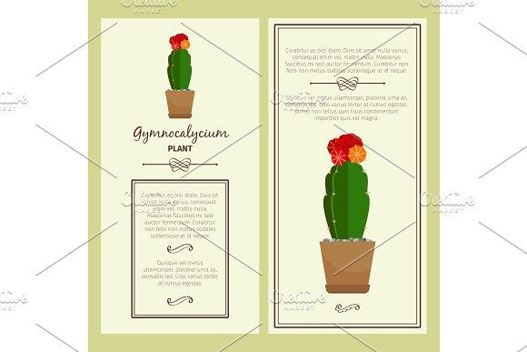 Greeting card with gymnocalycium plant