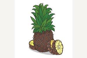 Isolate ripe ananas fruit