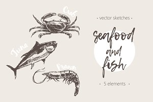 Set of hand drawn seafood and fish
