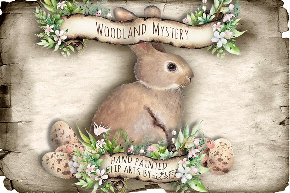 Woodland Mystery Watercolor Clip Art