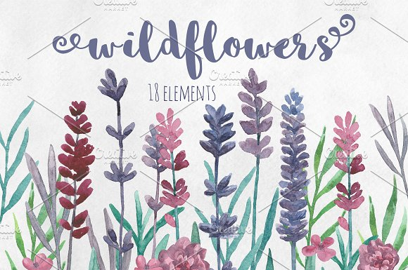 Watercolor wildflowers clip art