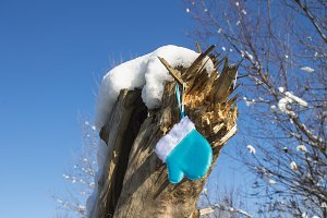 The blue mitten hangs in the street on a stump under the snow. Christmas toys.