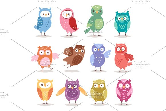 Owls vector cartoon cute bird set cartoon owlet character kids animal baby art for children owlish collection isolated on white background in Illustrations