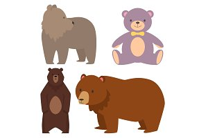 Different style bears funny happy animals cartoon predator cute character vector illustration