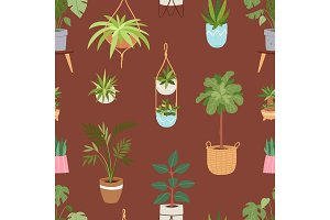 House indoor vector plants and nature homemade flowers in pot interior decoration houseplant natural tree illustration seamless pattern background