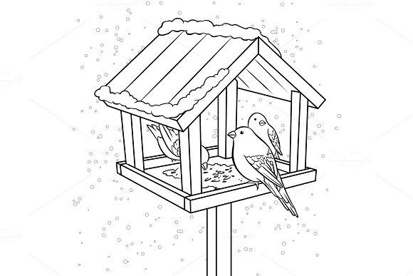 Winter bird feeder coloring book vector