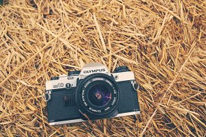 Analog camera on dry straw