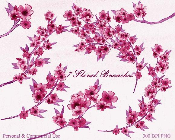 Burgundy Watercolor Sakura Floral in Illustrations - product preview 2