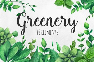 Watercolor greenery clip art