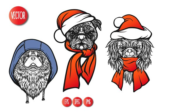13 Dogs in Hats in Objects