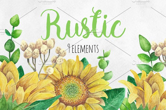 Watercolor rustic flowers c-Graphicriver中文最全的素材分享平台