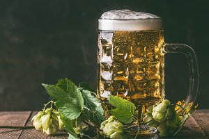Mug of beer hops on dark rustic