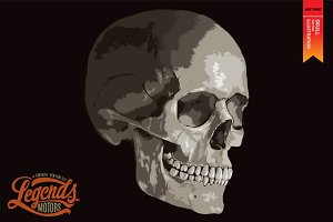 SKULL - Vector illustration