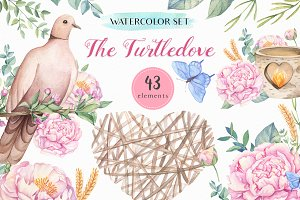 SALE -The Turtledove