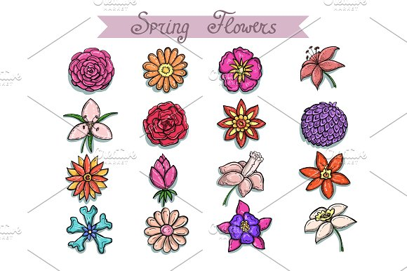 Set with hand drawn spring flowers objects creative market mightylinksfo