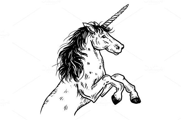 Unicorn engraving vector illustration