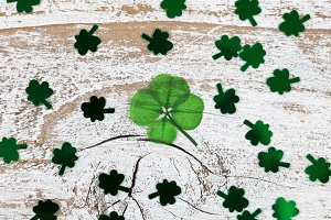 Real Lucky Four Leaf Clover