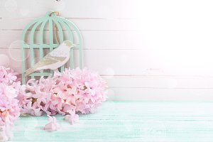 Pink hyathinths and decorative bird