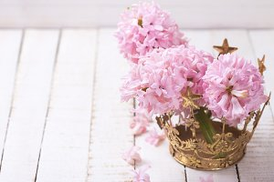 Flowers hyacinths in golden crown