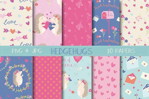 Hedgehugs paper