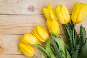 Beautiful yellow tulips on wood