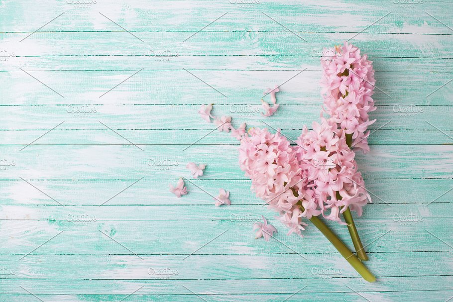 Background With Fresh Flowers Arts Entertainment Photos Creative Market