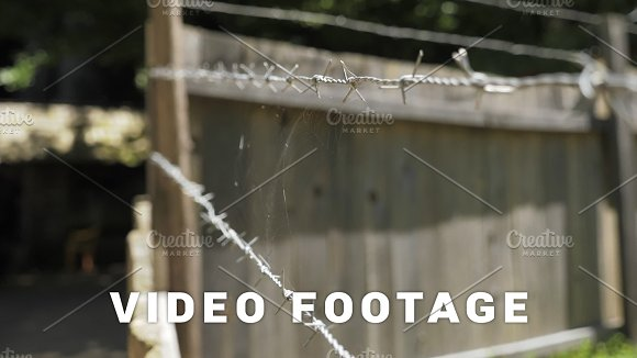 Spider web on barbed wire in Graphics