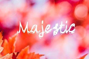 Majestic - Handwritten Script Font