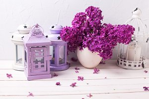 Splendid  lilac flowers and lanterns