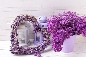 Fresh splendid lilac flowers, heart