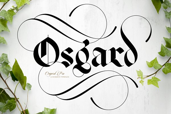 Blackletter Fonts: Anthony James - Osgard Pro | Font