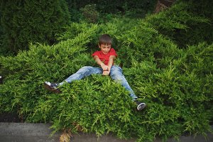 little boy lying on juniper
