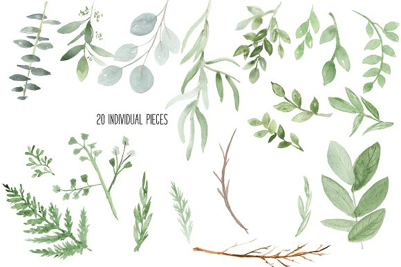 Watercolor Greenery Botanicals Illustrations Creative Market