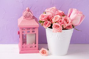 Roses in pot and pink lantern