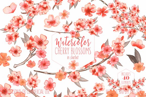 Watercolor Cherry Blossoms & Wreaths