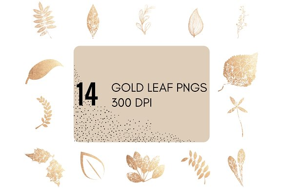 14 Gold Leaf PNGs