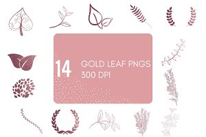 14 Pink Gold Leaf Pngs