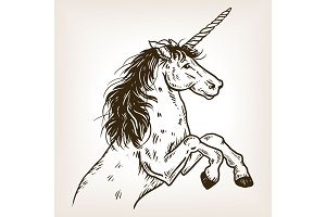 Unicorn engraving vector illustration