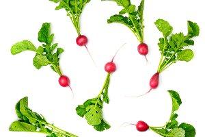 Collection red radish