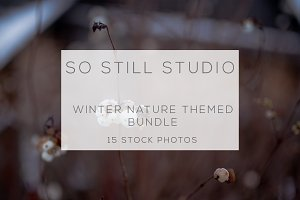 Winter time nature photo bundle