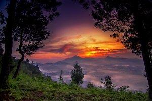 PUTRI MOUNT