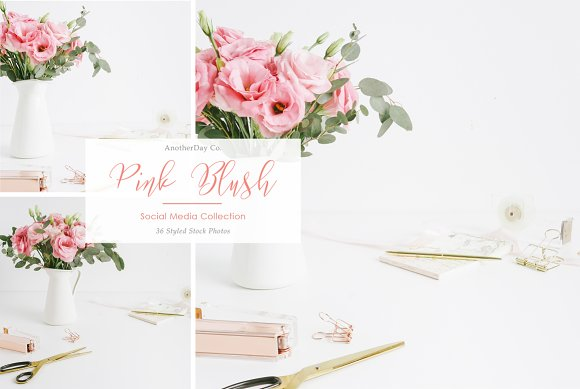 Pink Blush Desk Styled Stock Photo