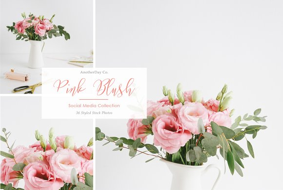 Pink Blush Flower Styled Stock Photo in Product Mockups